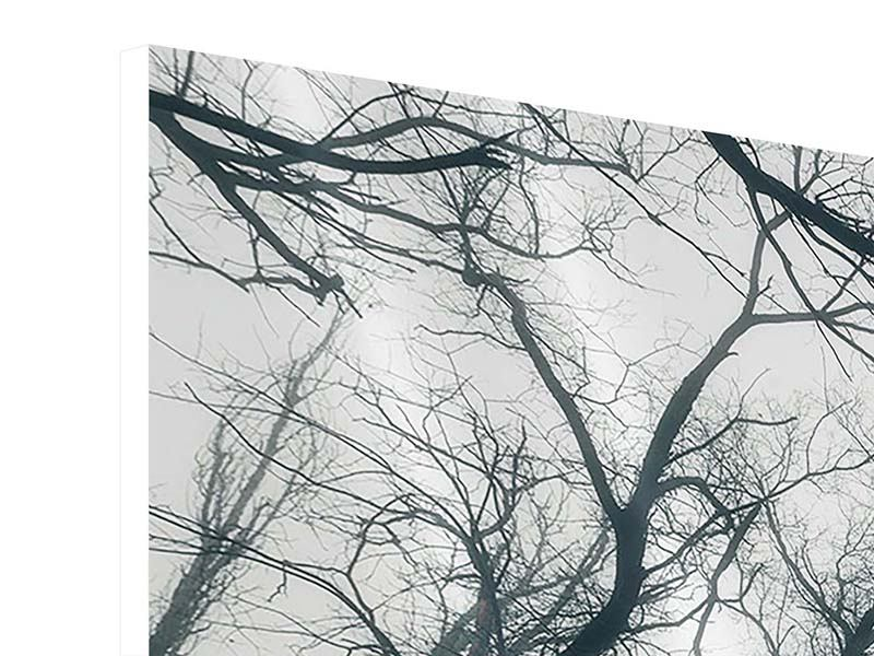 Hartschaumbild Mysteriöse Stimmung im Wald