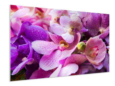 Hartschaumbild Im Orchideenparadies