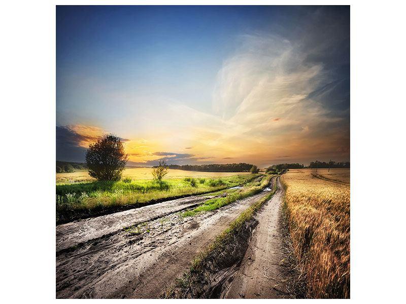 Hartschaumbild Sonnenaufgang am Feld