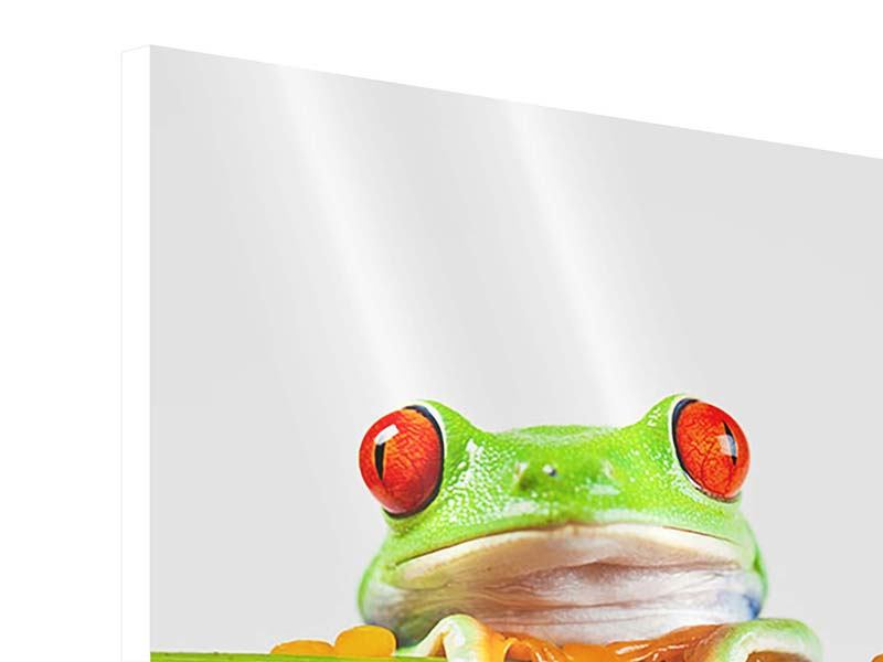 Hartschaumbild Frosch-Akrobatik