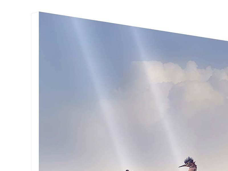Hartschaumbild Arche Noah
