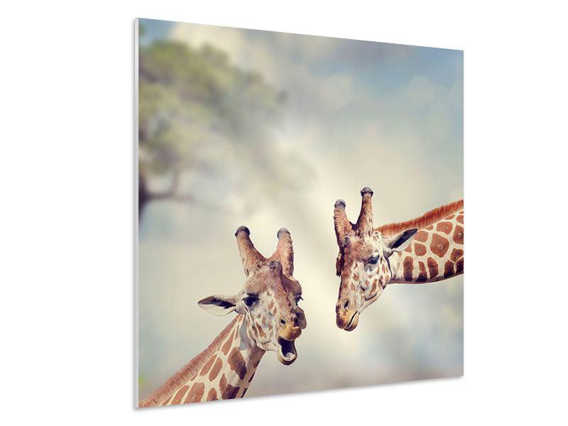 Hartschaumbild Giraffen
