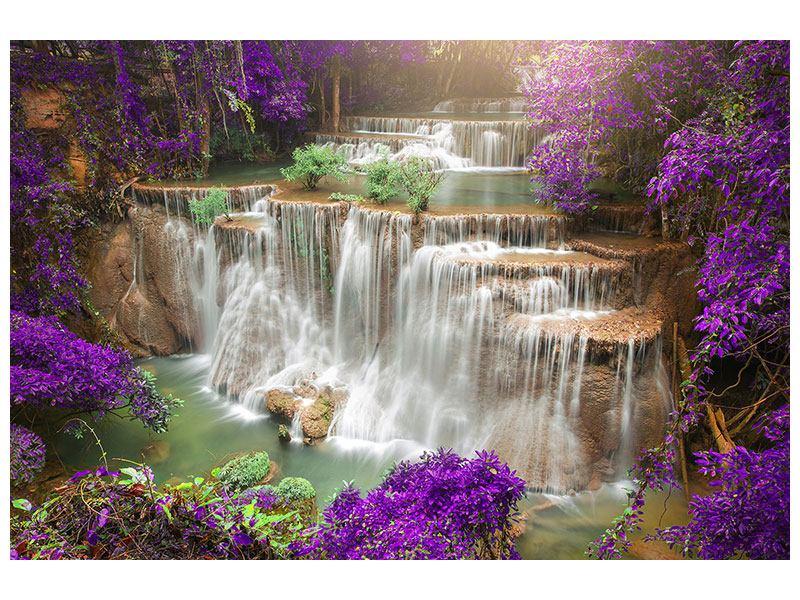 Hartschaumbild Garten Eden
