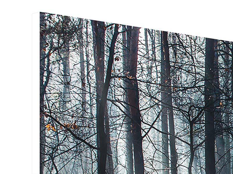Hartschaumbild Wald im Lichtstrahl