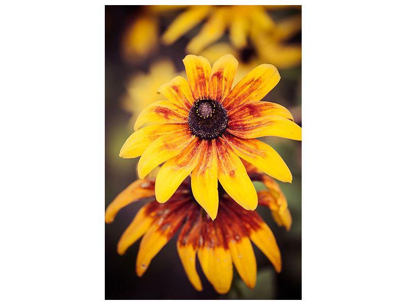 Hartschaumbild Fröhliche Blumen