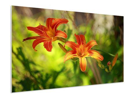 Hartschaumbild Lilien in der Natur