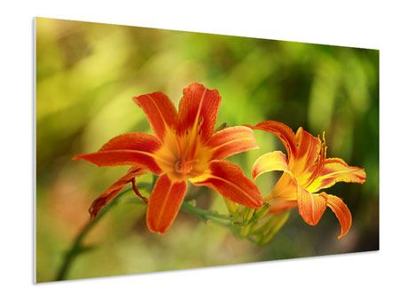 Hartschaumbild Natural Lilien