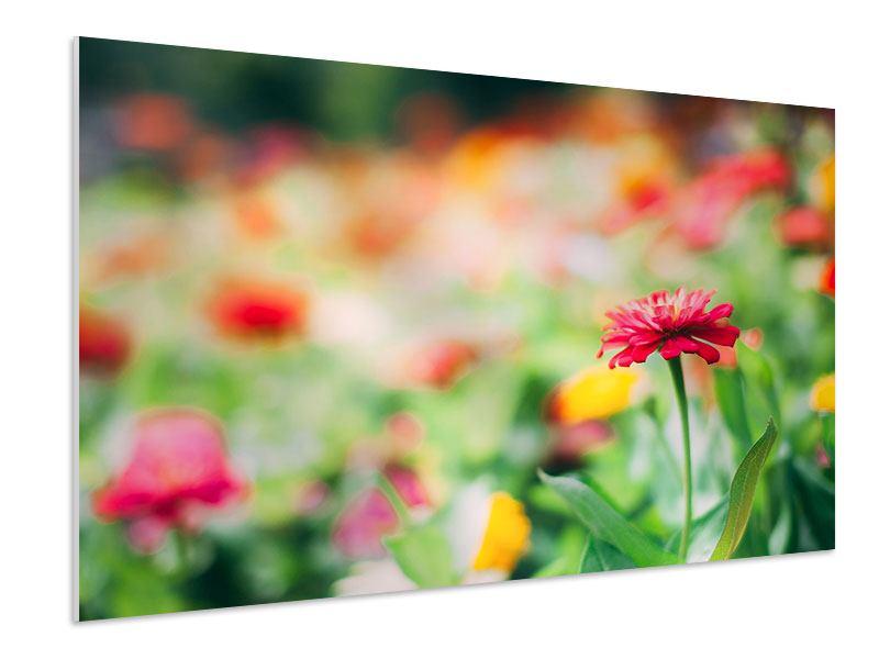 Hartschaumbild Im Blumengarten