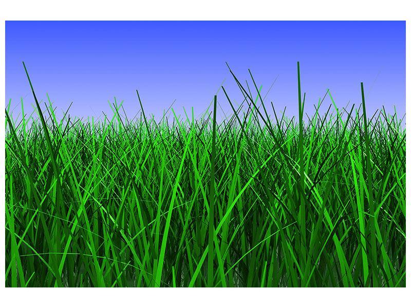Hartschaumbild Im Gras
