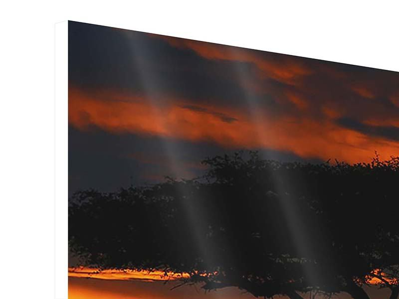 Hartschaumbild Sonnenuntergang in Kenia