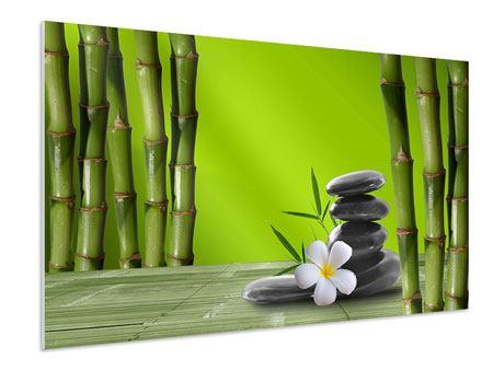 Hartschaumbild Der Bambus