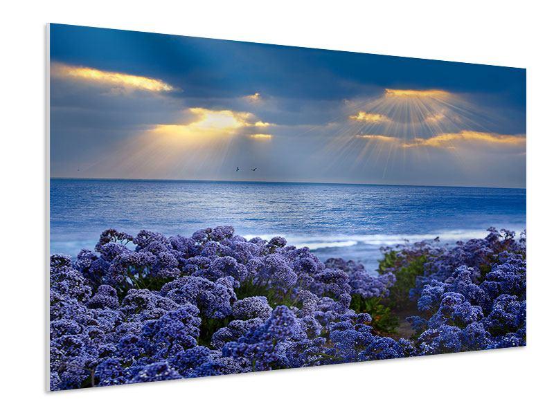 Hartschaumbild Der Lavendel und das Meer