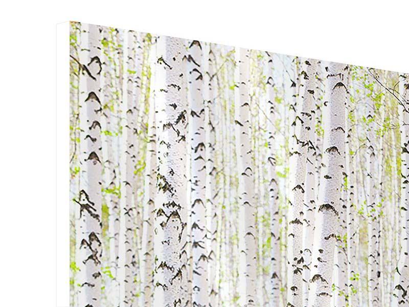 Hartschaumbild Der Birkenwald im Frühling