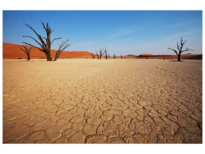 Hartschaumbild Wüste