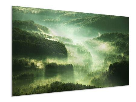 Hartschaumbild Über den Wäldern