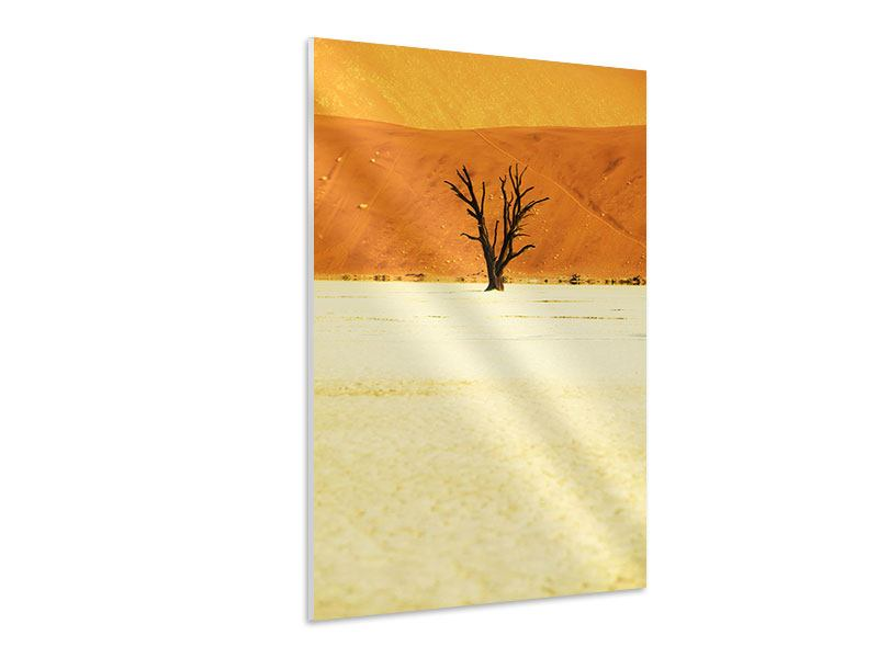 Hartschaumbild Der Wüstenbaum