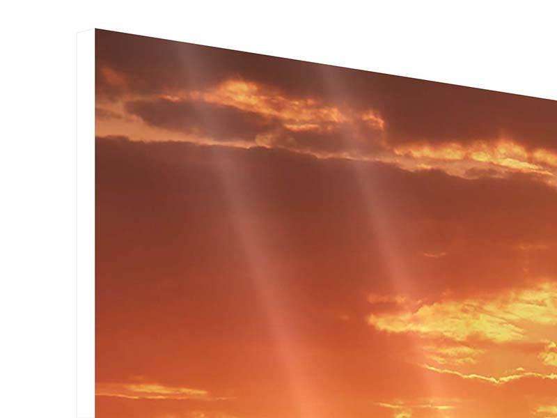 Hartschaumbild Sonnenuntergang in der Savanne