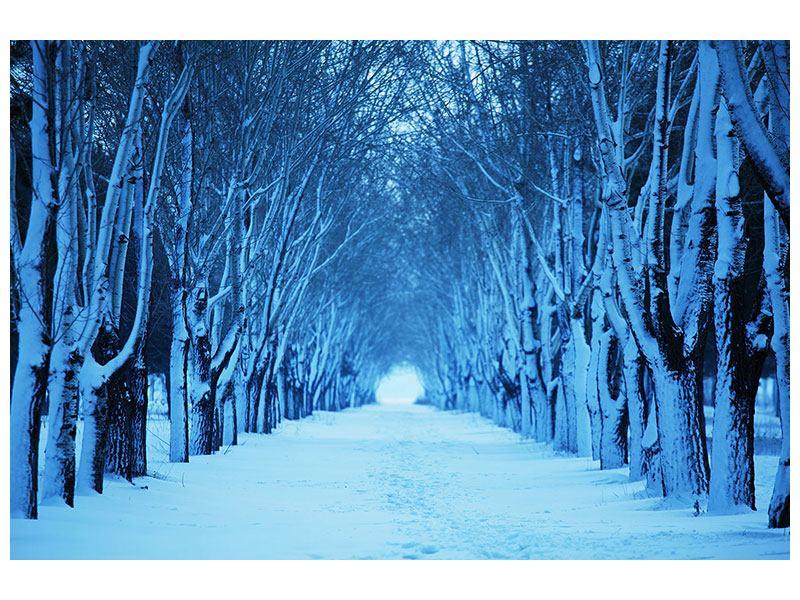 Hartschaumbild Winterbäume