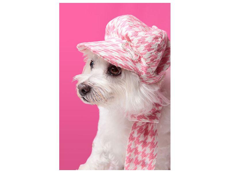 Hartschaumbild Pretty Dog In Pink