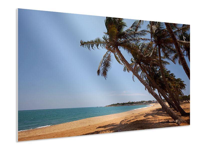 Hartschaumbild Palmblätter