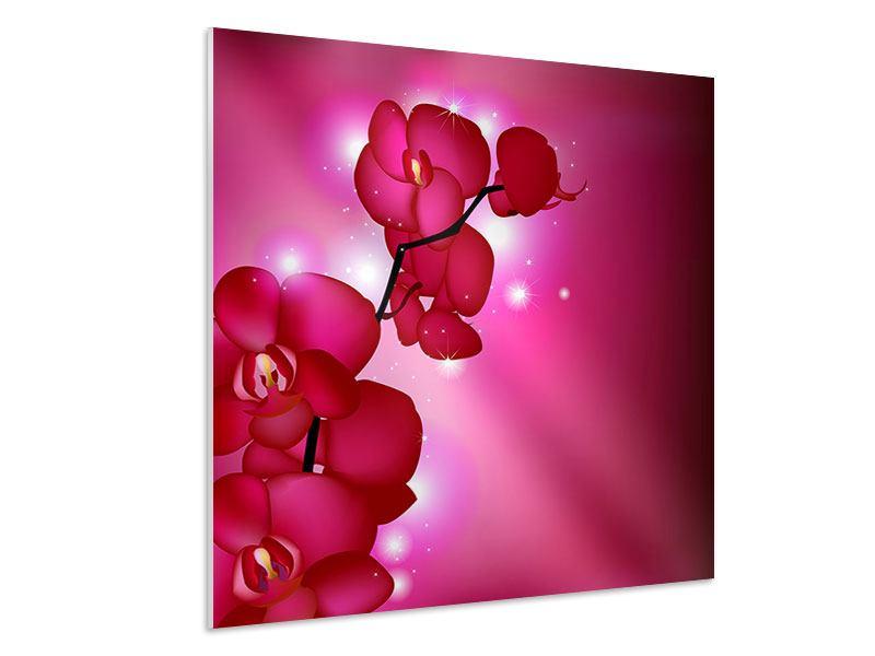 Hartschaumbild Orchideenmärchen