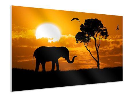 Hartschaumbild Verträumtes Afrika