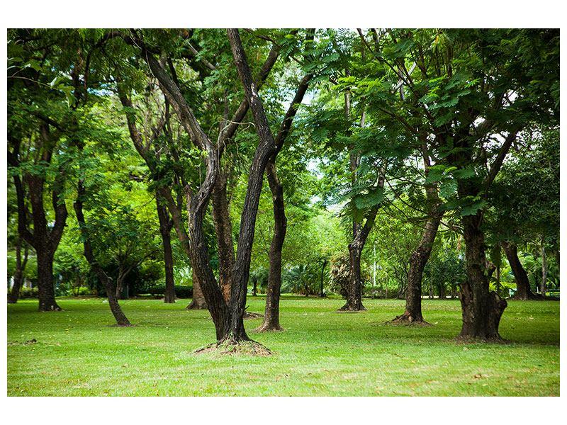 Hartschaumbild Kirschbaum-Garten
