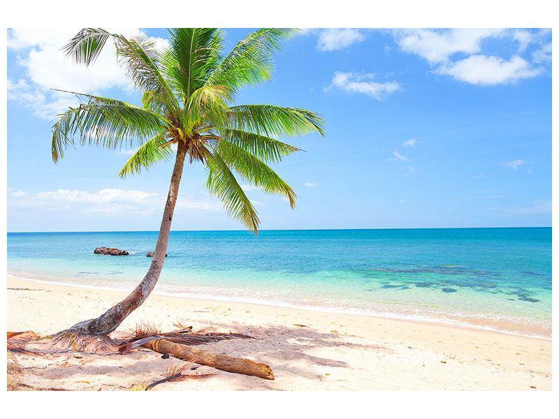 Hartschaumbild Die eigene Insel