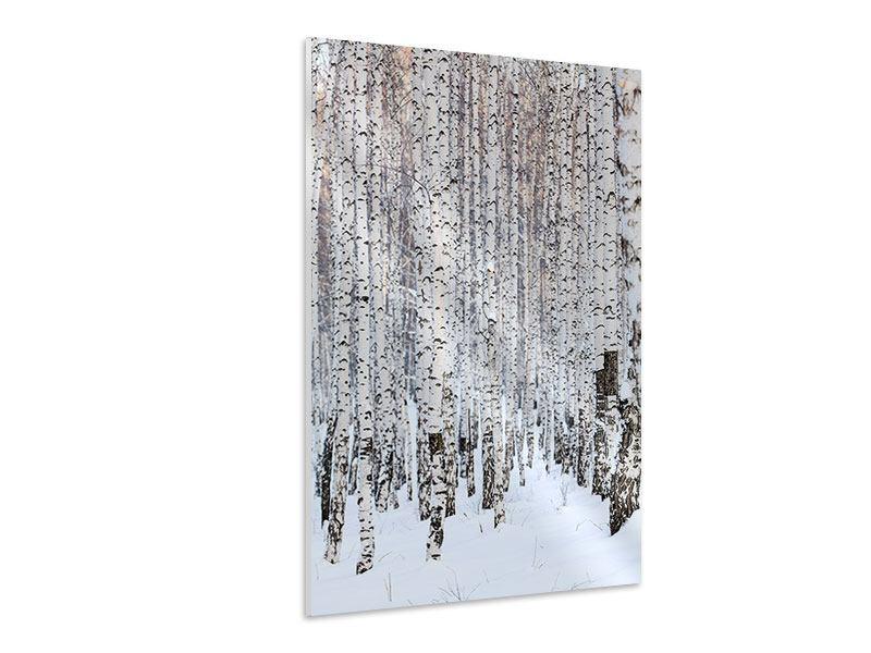 Hartschaumbild Der Birkenwald im Winter