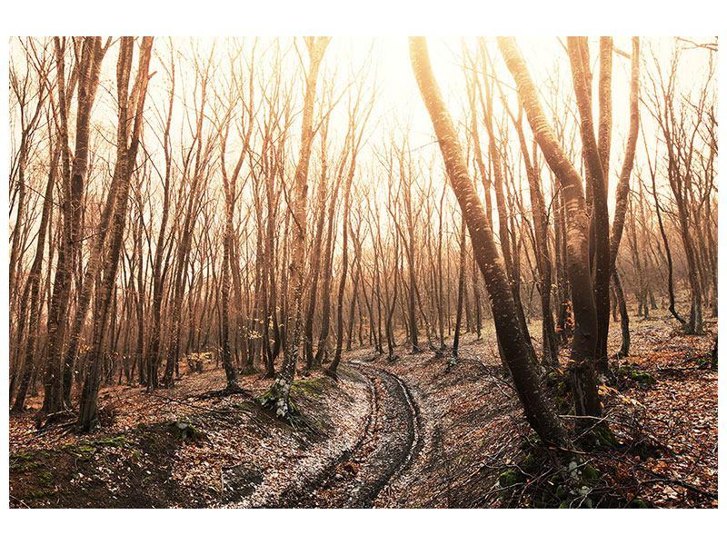 Hartschaumbild Der kahle Wald