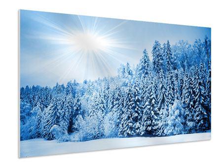 Hartschaumbild Wintermärchen