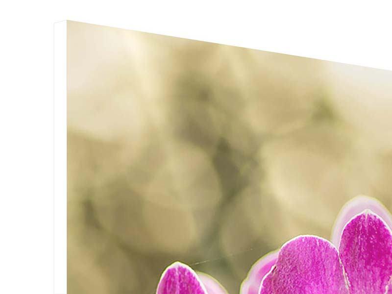 Hartschaumbild Orchideen Violett