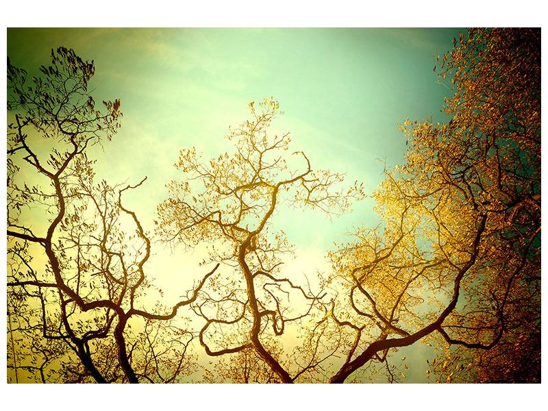 Hartschaumbild Bäume im Herbst