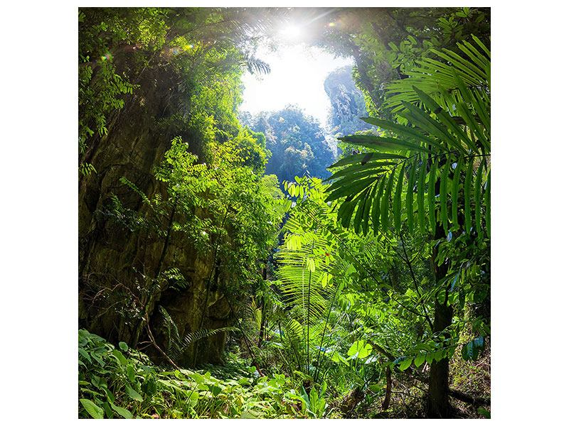 Hartschaumbild Lichtung im Dschungel