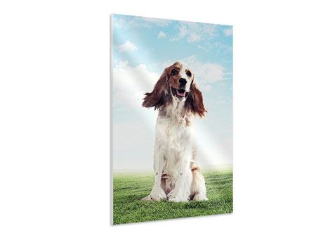 Hartschaumbild Funny Dog