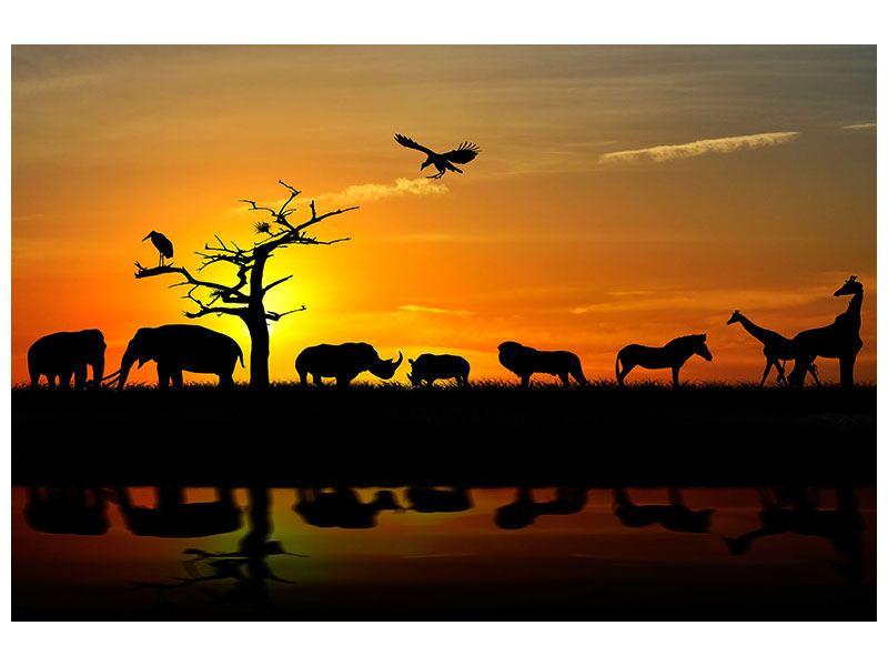 Hartschaumbild Safarietiere bei Sonnenuntergang