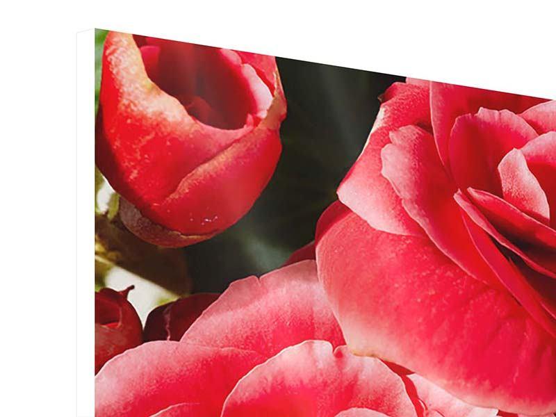 Hartschaumbild Rote Rosen