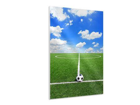 Hartschaumbild Fussballfeld