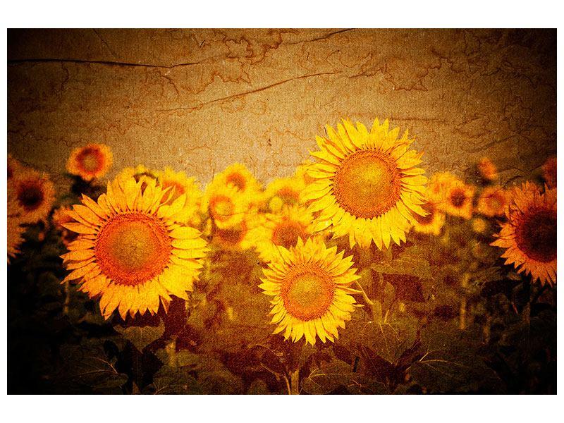 Hartschaumbild Retro-Sonnenblumen