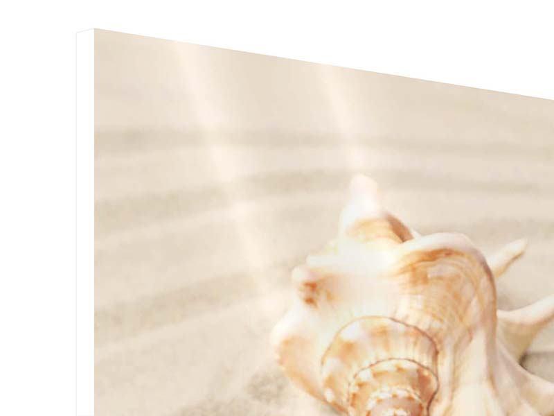 Hartschaumbild Die Muschel und der Seestern