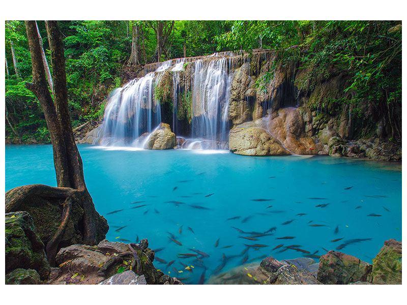 Hartschaumbild Naturerlebnis Wasserfall