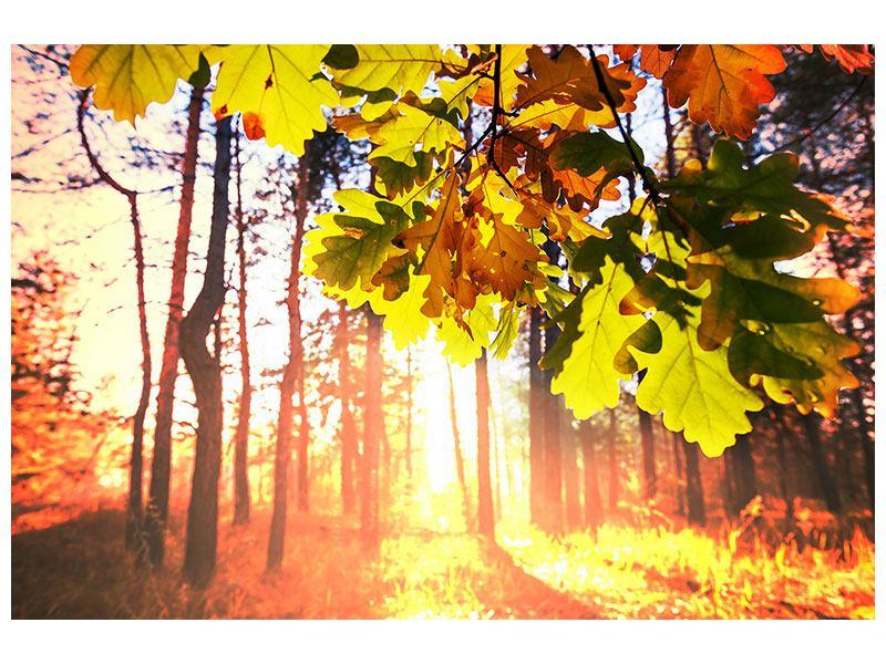 Hartschaumbild Herbst