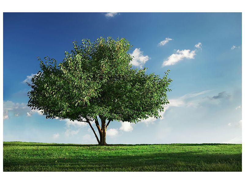 Hartschaumbild Baum im Grün