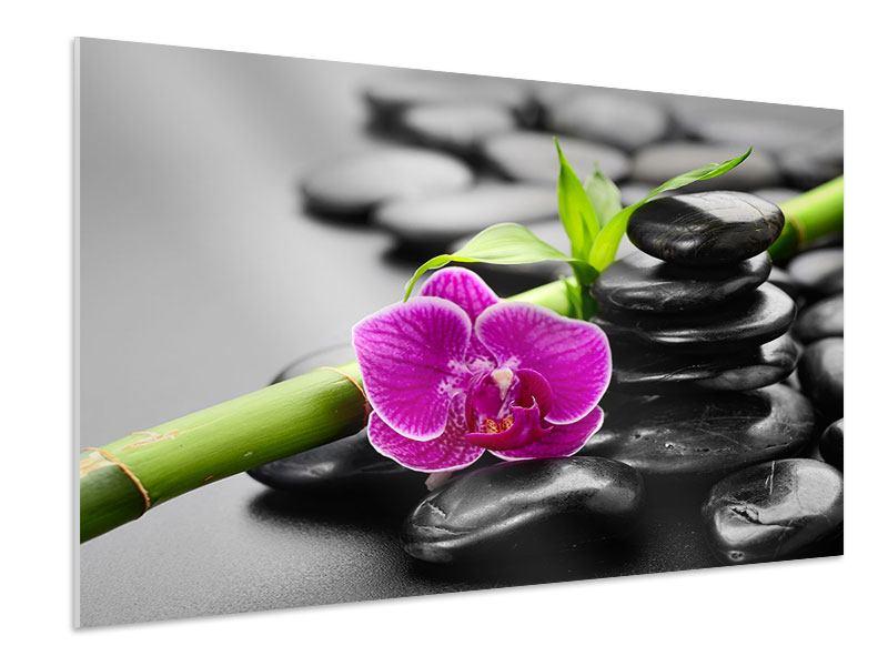 Hartschaumbild Feng-Shui-Orchidee