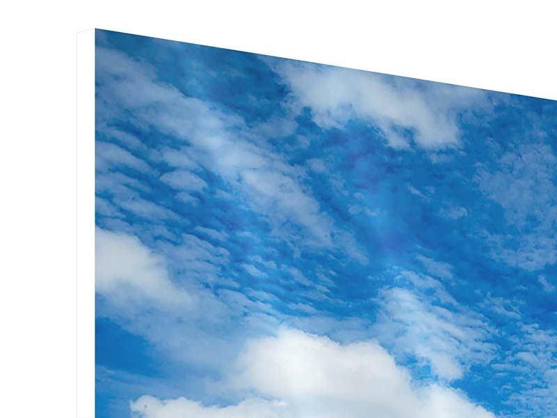 Hartschaumbild Hoch über den Wolken