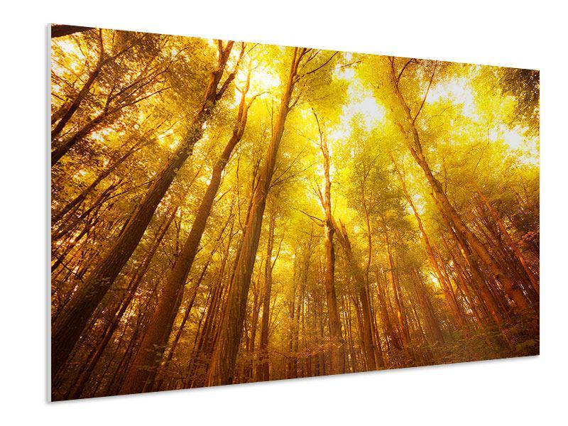 Hartschaumbild Herbstwald