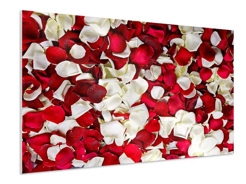 Hartschaumbild Rosenblätter