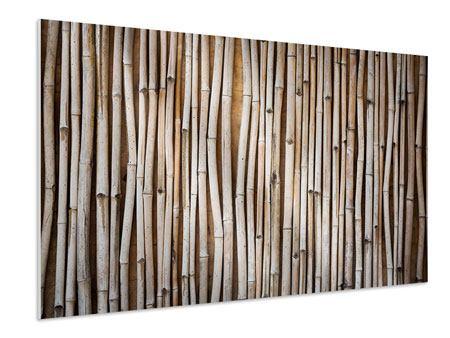Hartschaumbild Getrocknete Bambusrohre