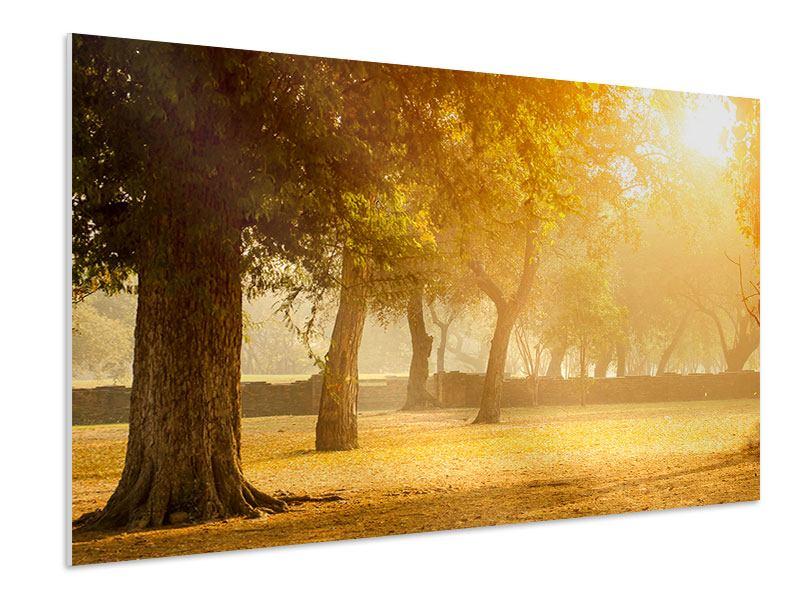 Hartschaumbild Romantik unter Bäumen
