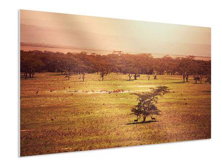 Hartschaumbild Malerisches Afrika